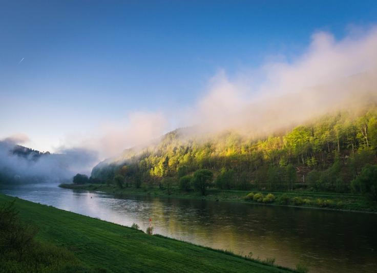 fog-1379906_1280