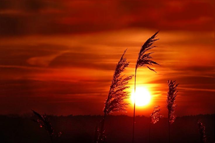 sunset-2019659_1280