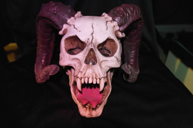 horned-skull-535747_1280