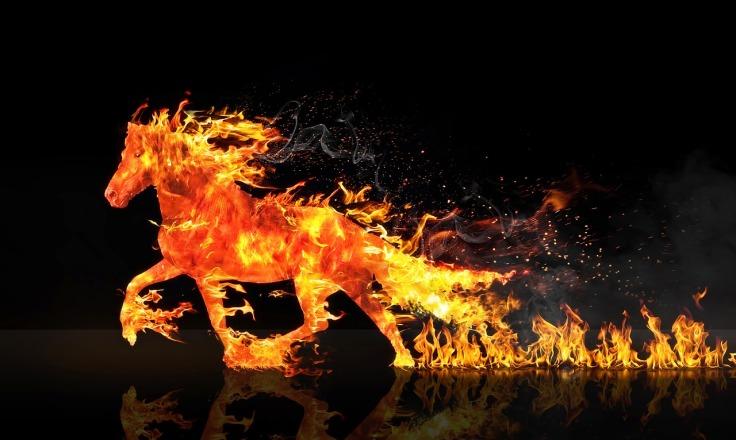 fire-horse-2492947_1280
